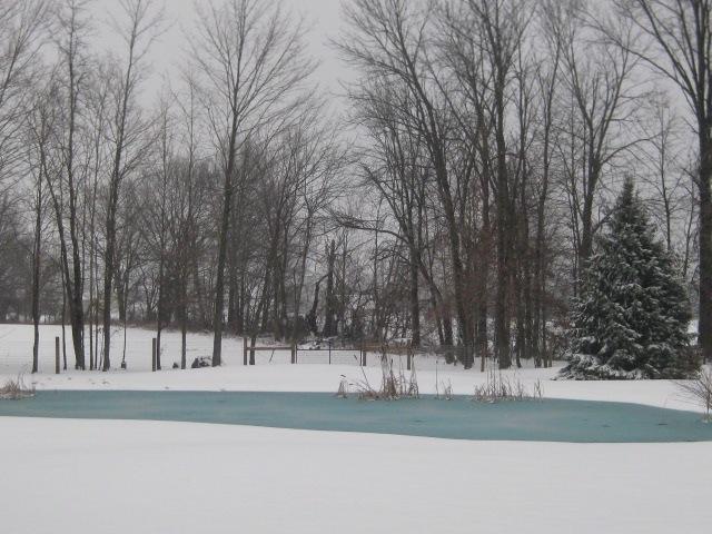 Snowy Pond 2