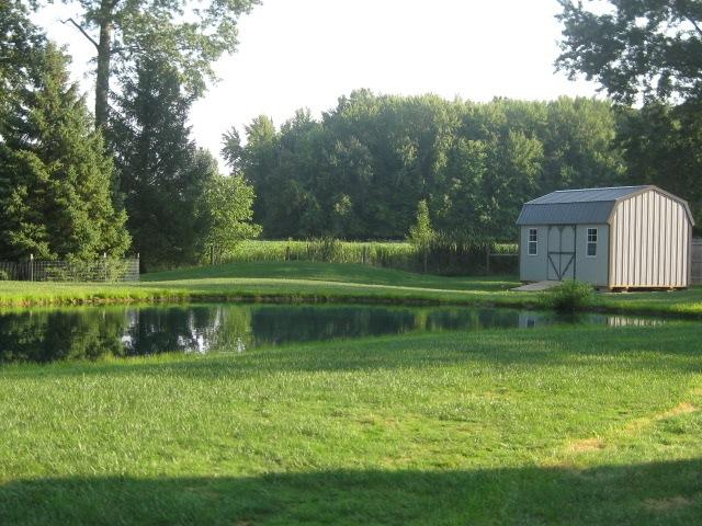 Summer Pond 2